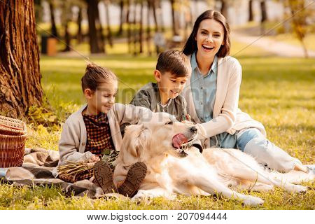 Little children and their mom sitting on a picnic blanket in a park and petting a dog