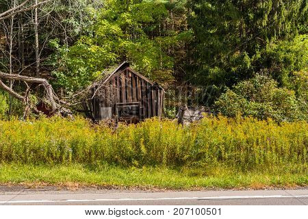 An old dilapidated shack in the woods just off the road.