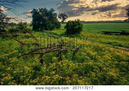 An old farm implement rusts in the field at a farm in South Africa