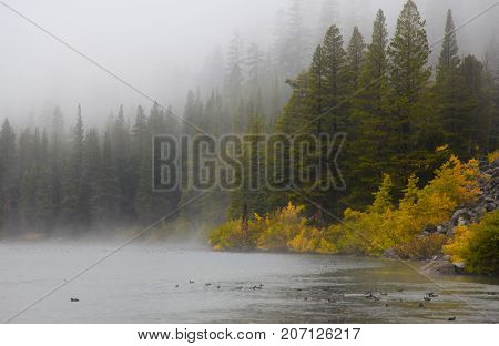 Mammoth lakes landscape on a rainy day in California