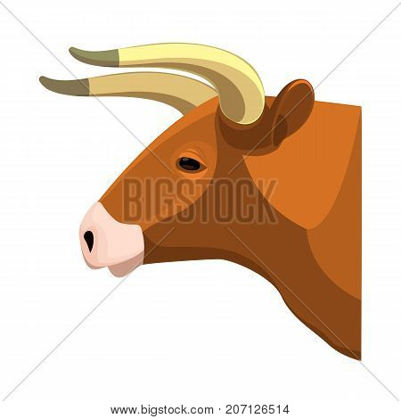 Bull head realistic icon profile view on brown muscular and aggressive male of cow with horns vector isolated on white. Beef ranching and dairy farming animal