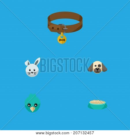 Flat Icon Animal Set Of Bunny, Hound Necklace, Feeding And Other Vector Objects