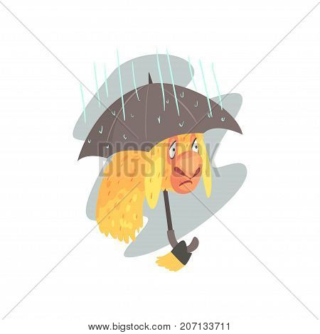 Sad llama character walking with umbrella in rainy day, cute alpaca animal cartoon vector Illustration on a white background