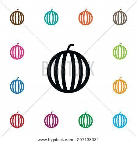 Muskmelon Vector Element Can Be Used For Watermelon, Melon, Muskmelon Design Concept.  Isolated Melon Icon.