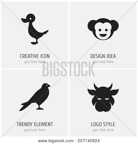 Set Of 4 Editable Zoology Icons. Includes Symbols Such As Baboon, Eagle, Quack And More