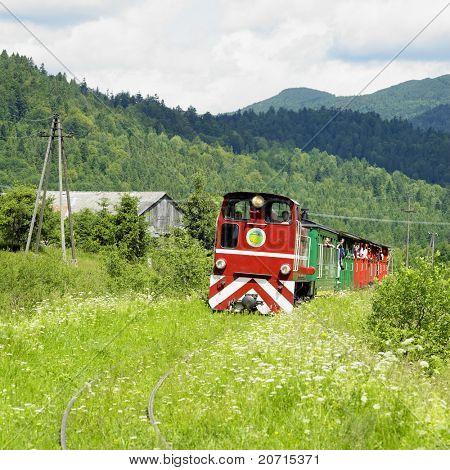 Bieszczadska wood railway, Dolzyca - Przyslup, Poland