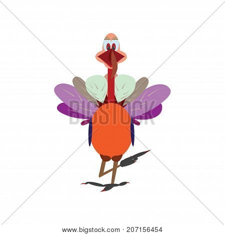 Thanksgiving colorful Turkey, vector illustration. Thanksgiving cartoon turkey bird isolated on a white background.