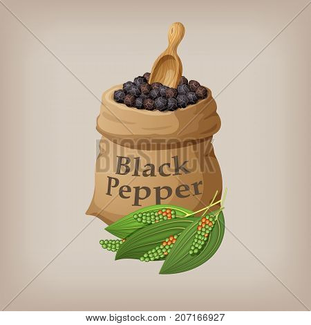 Black pepper corn in the bag. Vector illustration EPS10