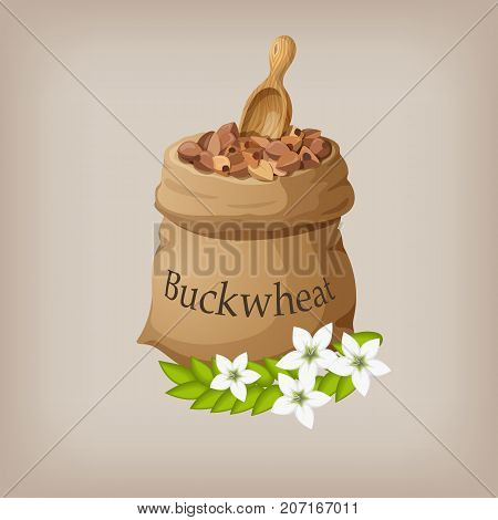 Buckwheat in the bag. Vector illustration EPS10