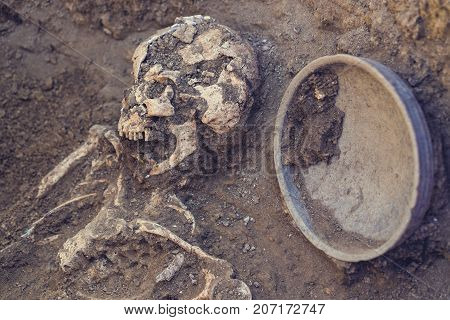 Archaeological excavations. research on human burial skeleton skull inventory