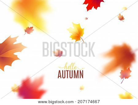 Vector illustration of autumn leaves background with blur effect. Fall defocused yellow red brown leafage