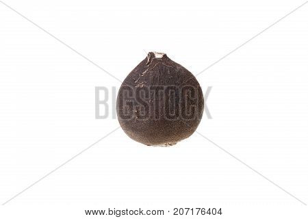 A Black radish isolated on white background