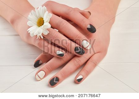 Well-groomed hands and white chrysanthemum. Female hands with matte manicure and little flower on white wooden background. Nail treatment and spa.