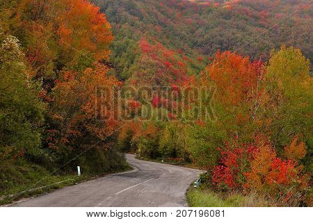 Scenic Autumn colors along the winding roadway.
