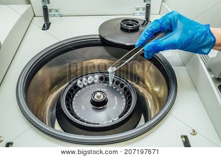Scientist taking out test tubes with DNA samples from centrifuge