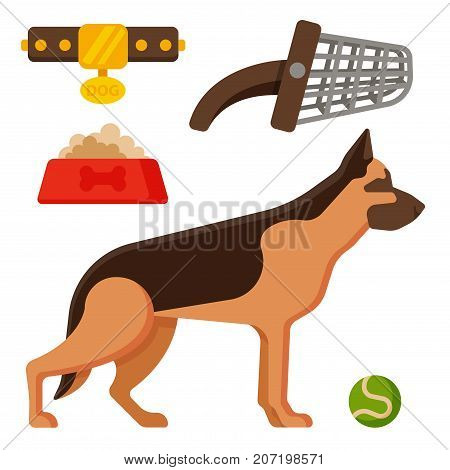 Vector illustration funny thoroughbred german shepherd dog nature attentive happy pet. Domestic mammal pedigree canine food and accessory.