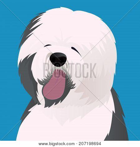 Old English Sheepdog close up vector illustration