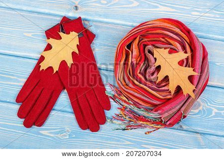 Autumnal Leaves, Woolen Gloves And Shawl For Woman, Womanly Clothing For Autumn Or Winter