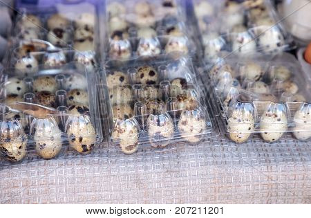 Small Egg Crates Of Speckled Quail Eggs