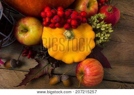 Harvest Concept With Yellow Squash And Apples