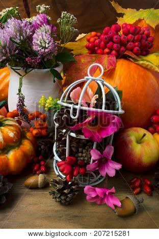 Fall Table Centerpiece With Clover And Decorated Birdcage