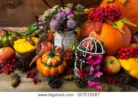 Fall Background With Birdcage Decorated Cones And Pink Flowers