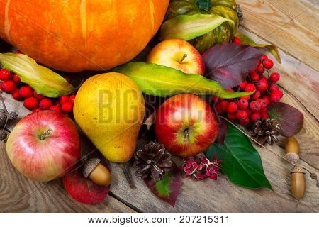 Thanksgiving Background With Pumpkin, Apples, Pear, Colorful Leaves