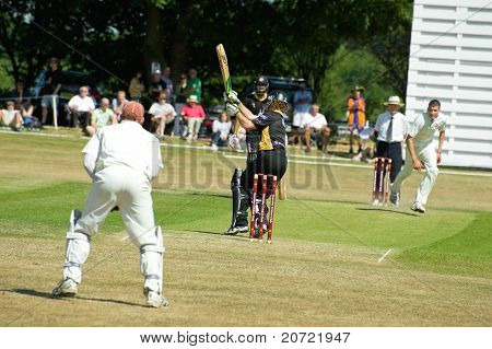 Pro-Am Cricket