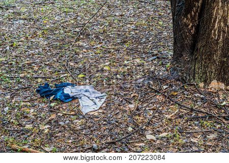 Discarded Blue And Gray Cotton Jumper
