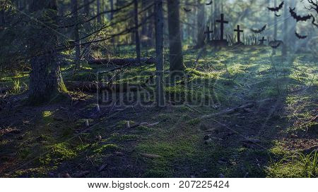 Halloween forest background. Spooky dark forest with moonlight. Misty forest at night with cemetery.