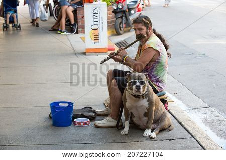 Key West USA-december 26. 2015 : Street musian or man playing flute with dog in Key West USA. Busker performing music in public place for tips in blue bucket. Busking and earning concept