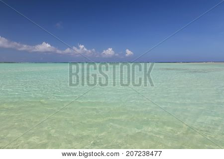 Bonaire Island Caribbean Sea Windsurf Lagoon Sorobon