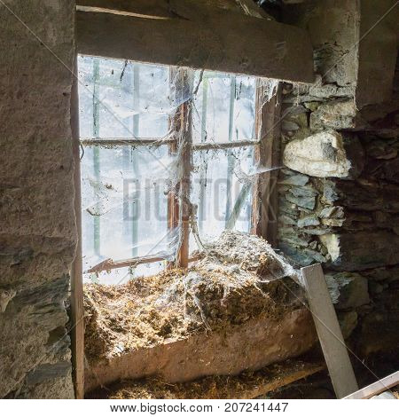 House In Decay - Rotten Interior