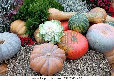 Beautiful colorful still life with lot of flowers and autumn vegetables on hay