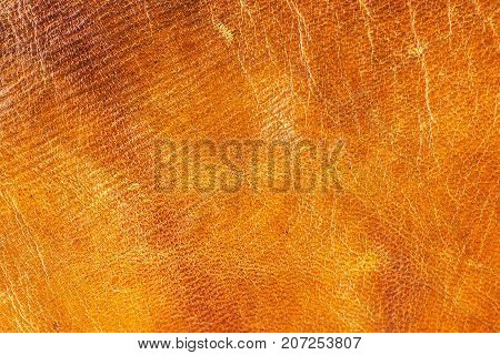 Old aged camel leather background. Texture scratched gradient yellow brown vivid colors. Creased.