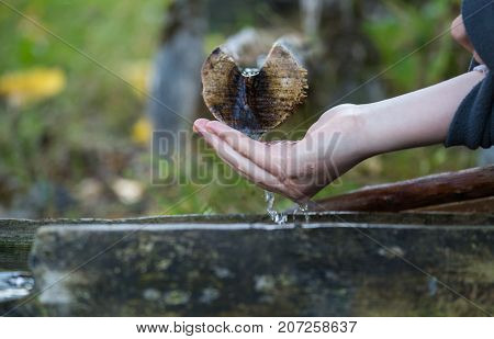 In the forest the source of water cold spring water from the depths of the earth flows down a wooden drain the woman's hand underneath wants to drink water