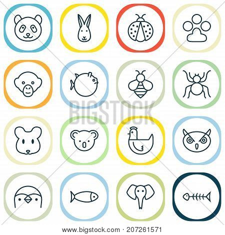 Nature Icons Set. Collection Of Bear, Trunked Animal, Fish And Other Elements