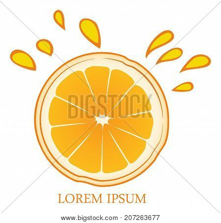 Vector orange fruit icon color vector on white background
