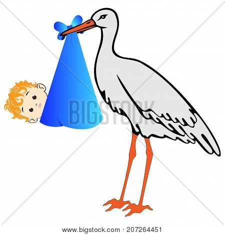Vector stork with baby boy on white background