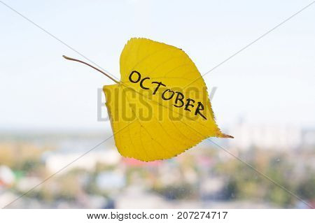 Yellow Leaf With Inscription October.