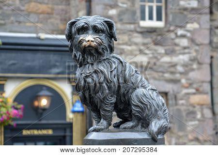 Statue Of The Dog Greyfriars Bobby In Edinburgh