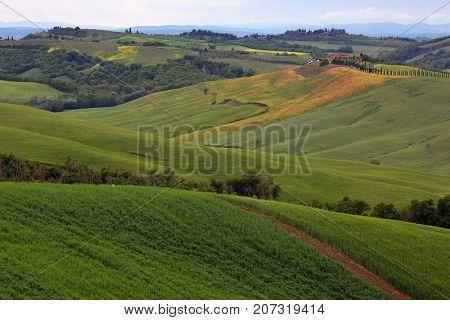 Tuscany background - farmland hill fields in Italy, Europe