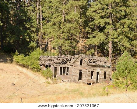Old derelict homestead in the Palouse region of Washington