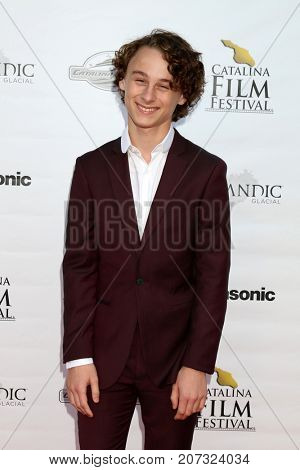 LOS ANGELES - SEP 30:  Wyatt Oleff at the Catalina Film Festival - September 30 2017 at the Casino on Catalina Island on September 30, 2017 in Avalon, CA