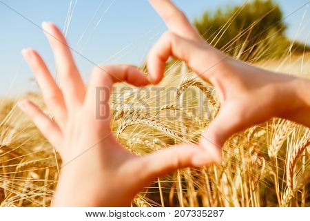 Picture of heart from palms on field