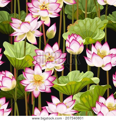 Vector botanical seamless pattern with pink lotus flowers