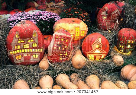 Halloween pumpkins with light inside and colorful still life with lot of flowers and hay