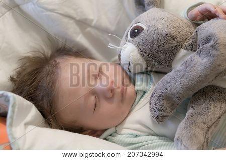 Baby And Ikea Rabbit