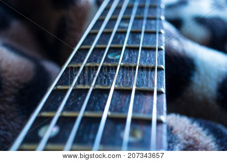 Macro photo of guitar neck and strings
