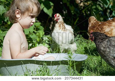 Happy childhood child development in harmony with nature concept. Beautiful little child girl bathing outdoors and having fun with chickens.